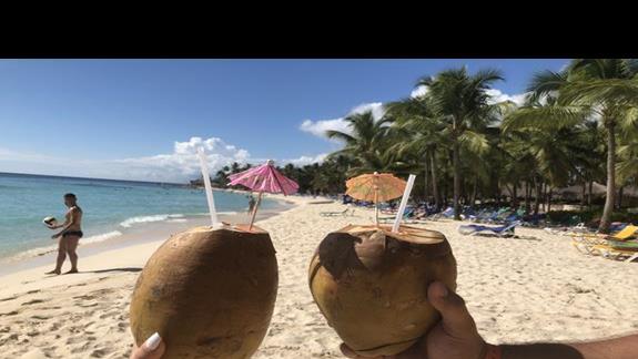 Pokarm boski - z drzewa kokoski