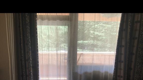 """Widok na modrzewie-pokój od strony """"ladu"""".Troche szumia urzadzenia chlodzace z restauracji w Metropolu"""