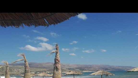 Widok na morze z tarasu z lezakami