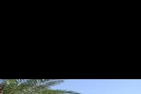 Hotel Sidi Mansour - Przy takim widoku moge zaczynac kazde sniadanie :)