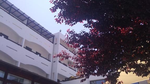 Basen przy budynku głównym otoczony zielenią