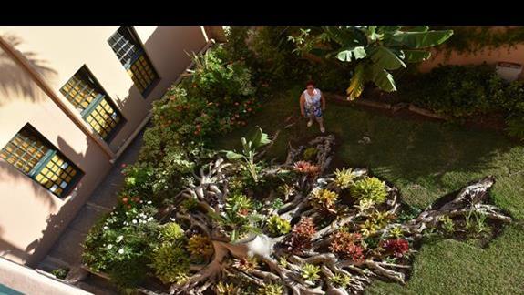 przepiękny ogród