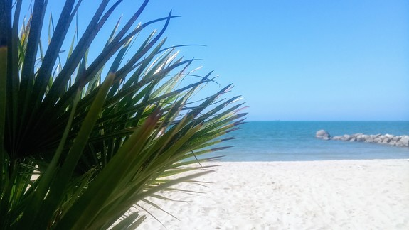 Plaża przy hotelu  Mel Holiday