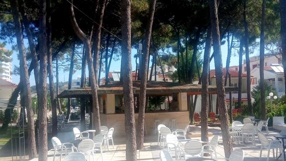 Bar przy basenie w hotelu Diamma Resort