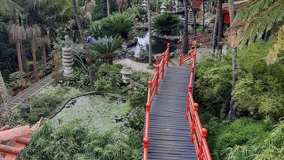 Ogród japonski
