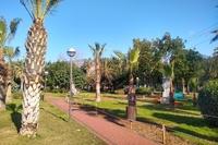 Hotel Kleopatra Atlas - Park obok hotelu