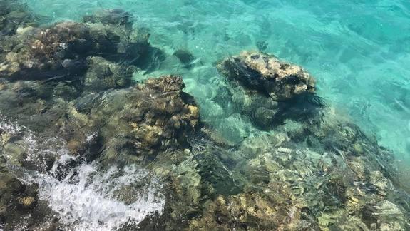 Czysta lazurowa woda na prywatnej plazy resortu