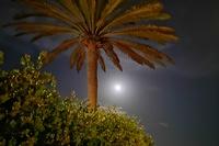 Hotel Bronze Playa - Promenada noca