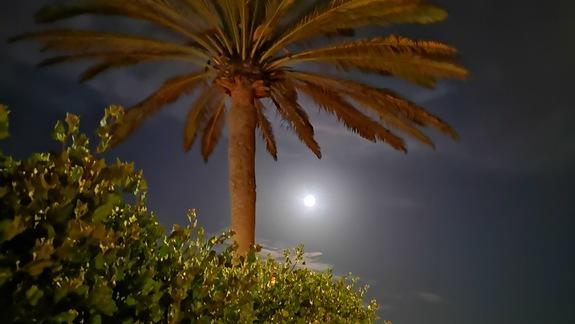 Promenada noca