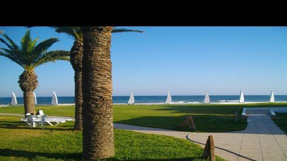 Widok z terenu hotelu na morze