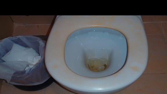 toaleta damska przy basenie jedna na cały hotel