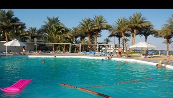 basen przy plazy ( z barem)