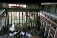 Hotel Grand Ontur - ogrodowe wnetrze hotelu