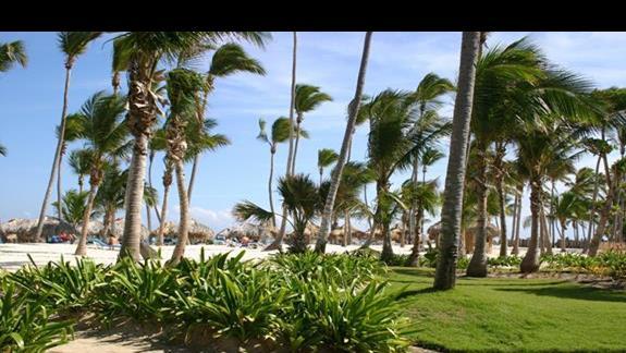 wejście na plażę resortu