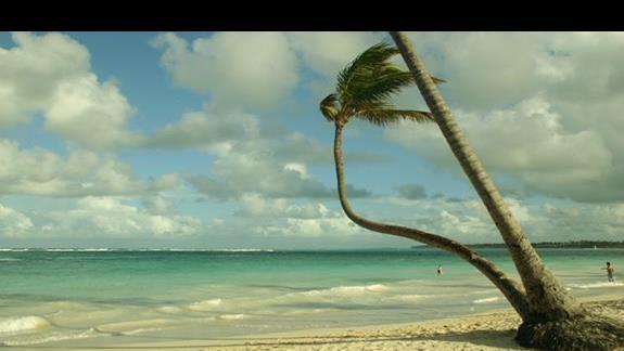 ze spacerów brzegiem plaży resortu Bavaro