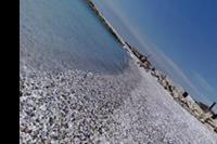 Tirrenia - Wybrzeże w mieście Tirrenia