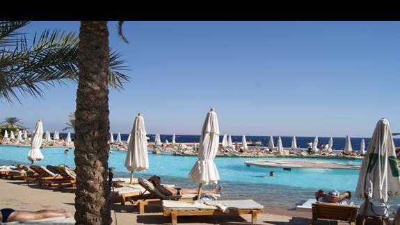 Basen najbliżej plaży w hotelu Rehana Royal Beach