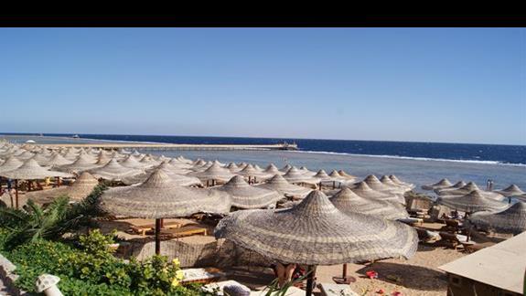 Plaża hotelu Rehana Royal Beach