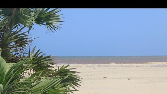 plaża hotelowa i widok na ogólnodostępny pas do wody