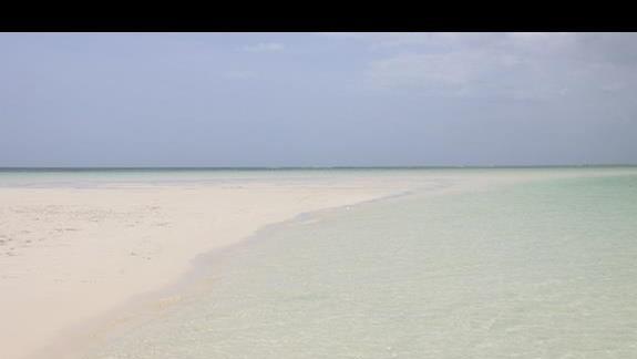 wysepki na środku oceanu zrobione przez odpływy. BLUE SAFARI