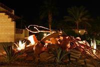 Hotel Coral Beach - Dekoracje w ogrodzie