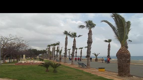 Jedna z alejek spacerowych w Limassol.