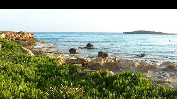 Nissi Beach najbardziej imprezowa plaża regionu z charakterystyczną małą wysepką