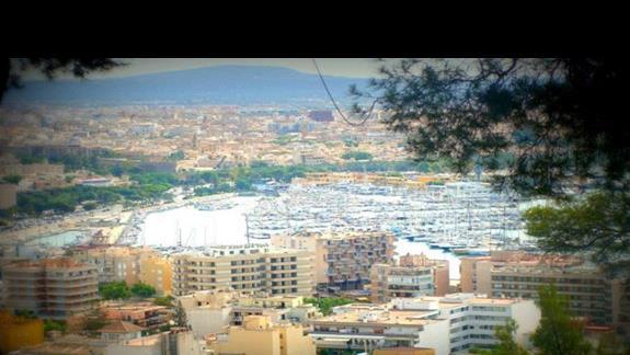 Widok na port w Palma de Mallorca.