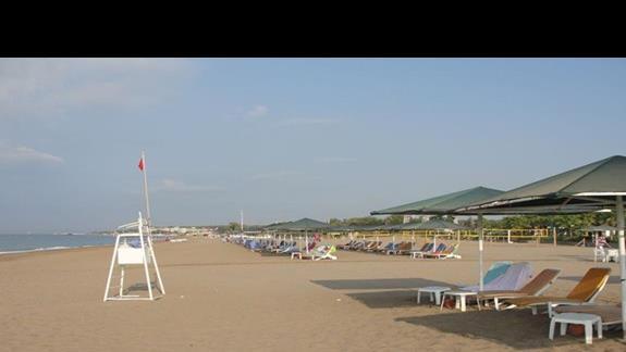 ... plaża o poranku ...