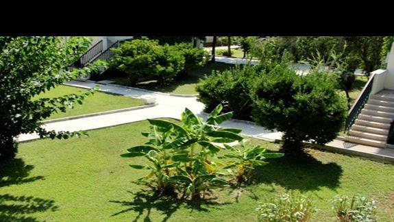 ... ogród 2 ...