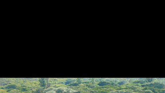 wiodk z góry na kompielsko u stóp wodospadów