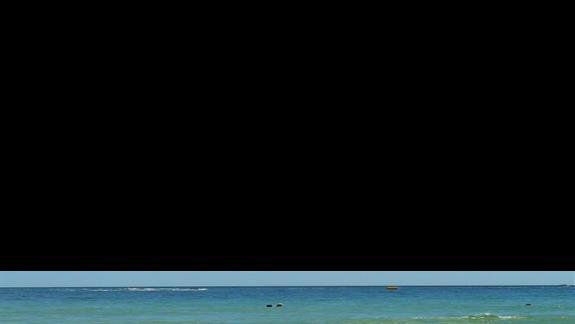 Morze Czarne jest idelane gdy nie ma glonów