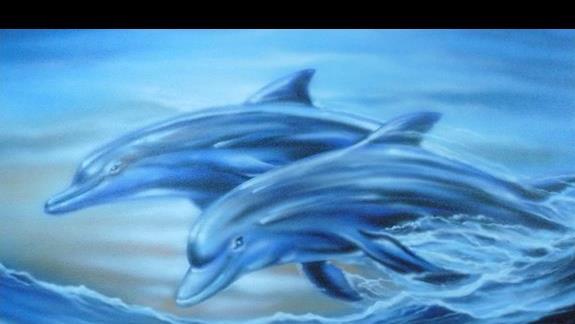 jeden z plakatów w delfinarium