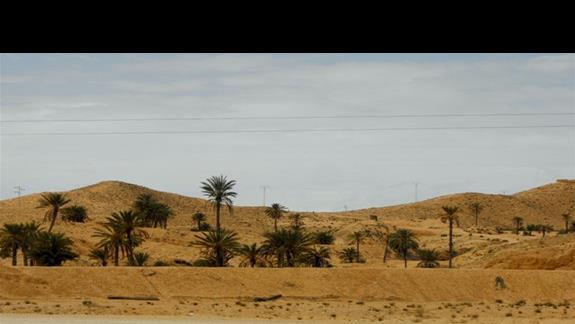 Gdzieś między Sfax a Douz...