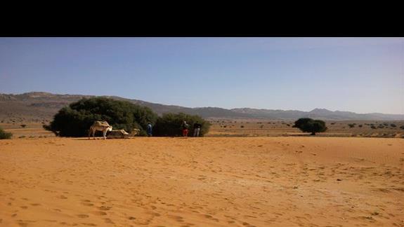 wycieczka na małą Saharę. Zdecydowanie polecam wycieczki!
