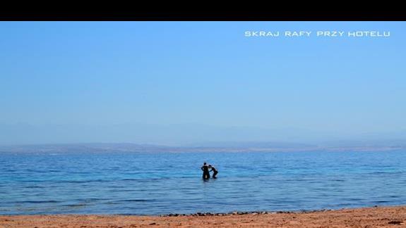 Ze skraju rafy śmiałkowie skakali w morską głębię