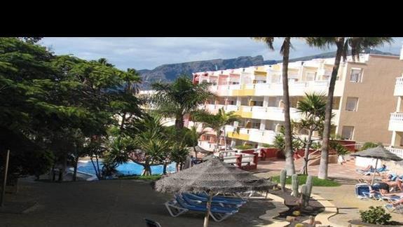 Leżaki wokół kaktusów na terenie hotelu.