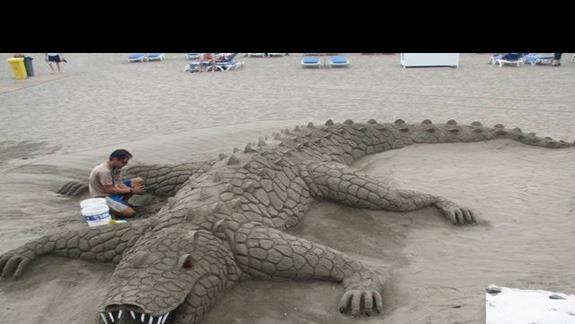 Ciekawe stwory z piasku na plaży w Los Amerikanos.