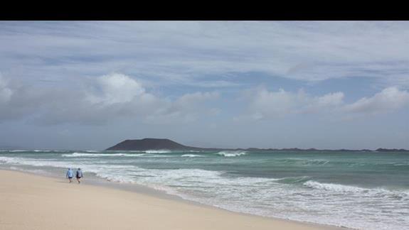 Plaża + niezamieszkała wyspa Lobos