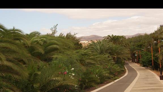 rezerwat przebiegający wzdłuż miejscowości Costa calma
