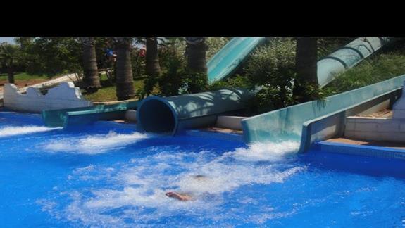 lądowanie w basenie