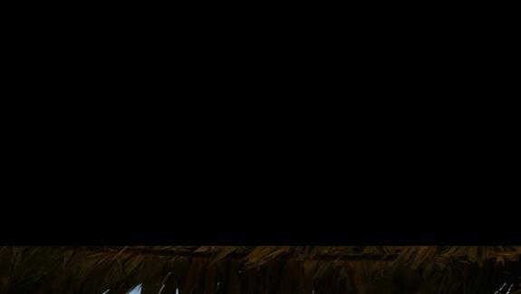 widok spod parasola z liści palmowych