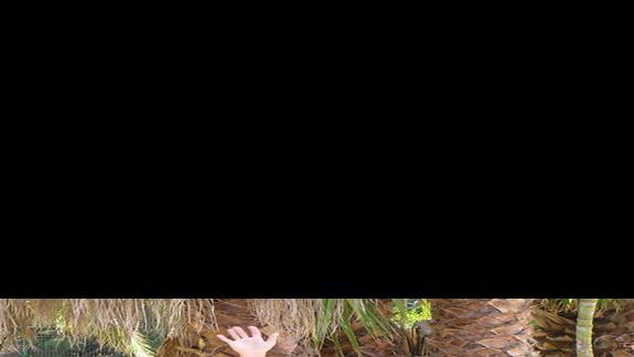 Tu tubylcy próbowali mnie zasłonić - byłem szybszy ! Wężów jakoś się nigdy nie bałem.