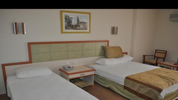 Pokój standardowy w hotelu Blue Star