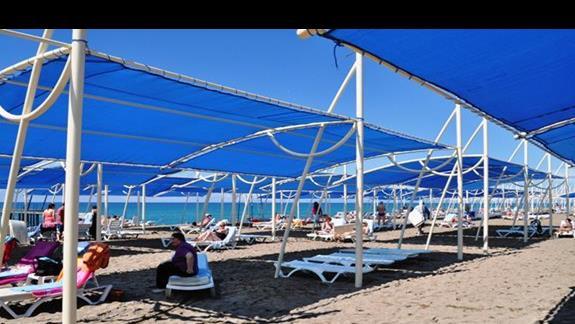 Plaża w hotelu Sea World Resort
