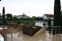 Hotel Crystal Rocks - Widok na basen i ogród