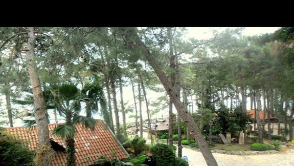 Teren hotelu - dojście na plażę Marmaris Palace