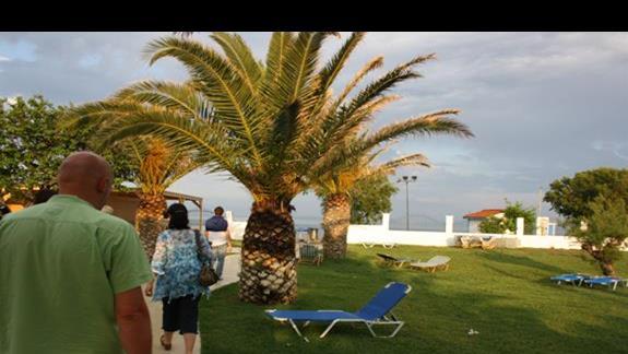 ogród przy plaży Mitsis Faliraki Beach