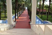 Hotel Seven Seas Blue - Wyjście z budynku głównego na teren ogrodu