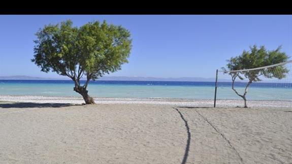 Plaża w hotelu Sunshine
